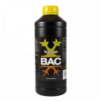 Yuccah BAC